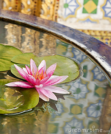 Thai pattern reflex on the lotus sink