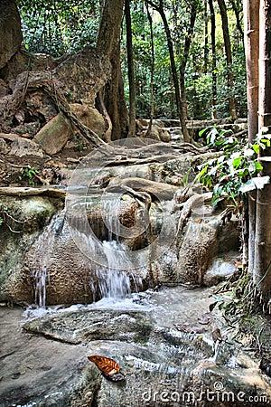 Thailand - national park