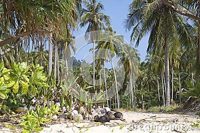 Thailand: Paradise Beach