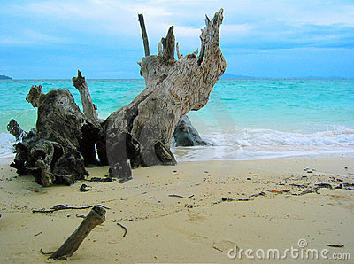 Thailand - Paradise Beach V