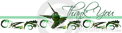 Thank You Hummingbird Card 2