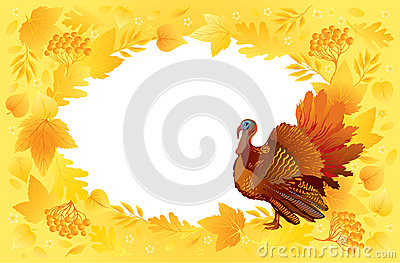 Thankgiving card with turkey