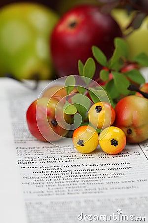 Free Thanksgiving Bible Stock Image - 16006871