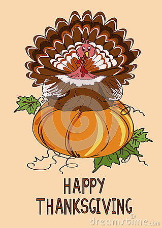 Thanksgiving card with pumpkin and turkey bird