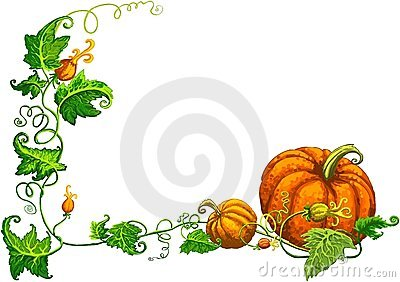 Thanksgiving frame with nice orange pumpkins