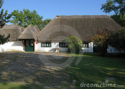 Thatch roof renovated house