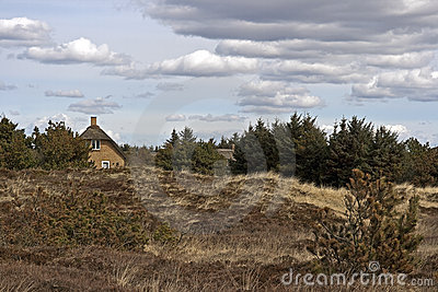 Thatched house in heathlands