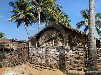 Thatched huts and palm trees