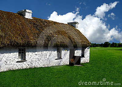 Thatched Roof Home in Grassy Field