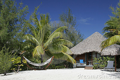Thatched Roof Hut and Hammock