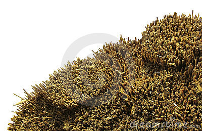 Thatched Roof isolated
