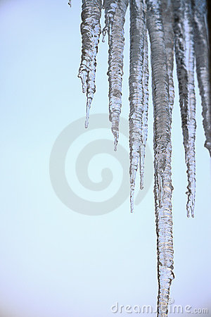 Thawing icicles