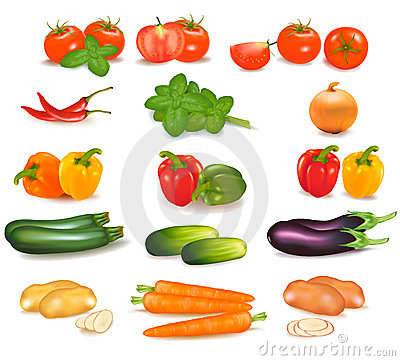 Free The Big Colorful Group Of Vegetables. Stock Images - 19136154