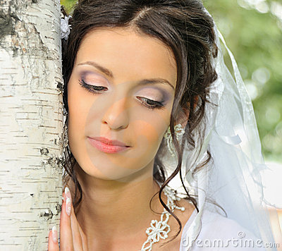 Free The Bride And A Birch Stock Images - 10900764