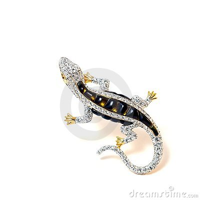 Free The Brooch Lizard. Royalty Free Stock Images - 6862539