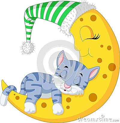 Free The Cat Sleep On The Moon Stock Photos - 77260643