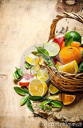 Free The Concept Of Citrus. Basket Of Citrus Fruits - Grapefruit, Orange, Tangerine, Lemon, Lime . Royalty Free Stock Photography - 64811707