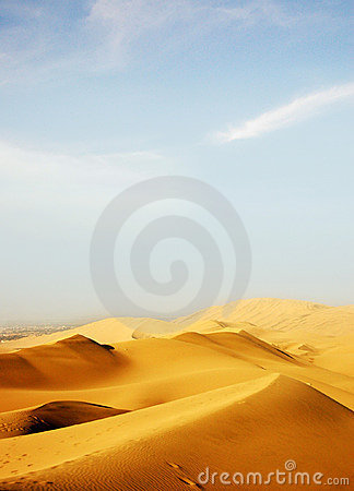 Free The Desert Royalty Free Stock Photography - 9043657
