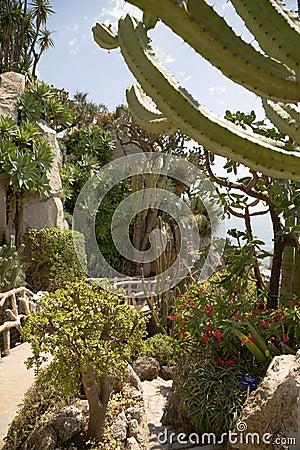Free The Exotic Garden Of Monaco Stock Photos - 32834903