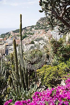 Free The Exotic Garden Of Monaco Stock Photos - 32846033
