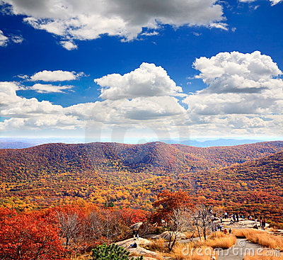 Free The Foliage Scenery From The Top Of Bear Mountain Stock Photos - 11564213