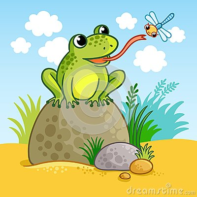 Free The Frog Sits On A Large Rock. Royalty Free Stock Photos - 101477658