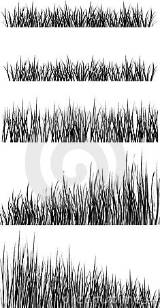 Free The Grass Royalty Free Stock Image - 3941986
