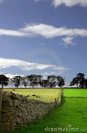 Free The Grass Is Greener ... Stock Photos - 2172273