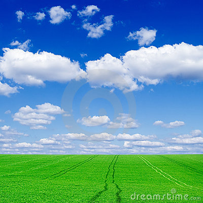 Free The Green Field Stock Photography - 3719242