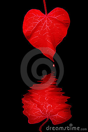 Free The Heart Makes Waves Royalty Free Stock Image - 2688396