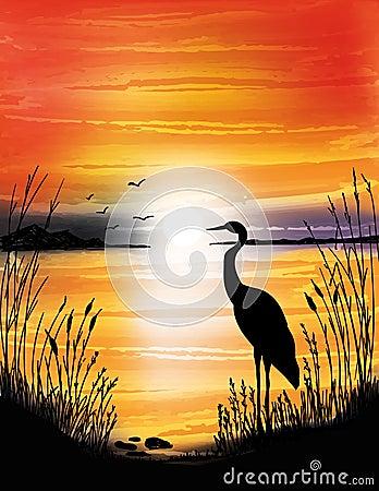 Free The Heron On The Lake On Sunset Royalty Free Stock Image - 95818916