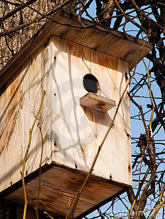 Free The House For Birds Royalty Free Stock Photography - 8462697