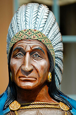 Free The Indian Chief Royalty Free Stock Photo - 5900455