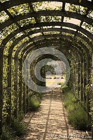 Free The Lane Royalty Free Stock Photos - 25421308
