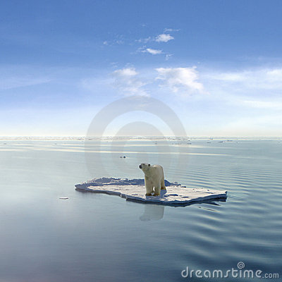 Free The Last Polar Bear Stock Photos - 3020003