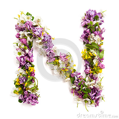Free The Letter «N» Made Of Various Natural Small Flowers. Royalty Free Stock Images - 94021639
