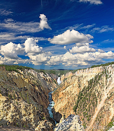 Free The Lower Falls In The Yellowstone Stock Images - 7126704