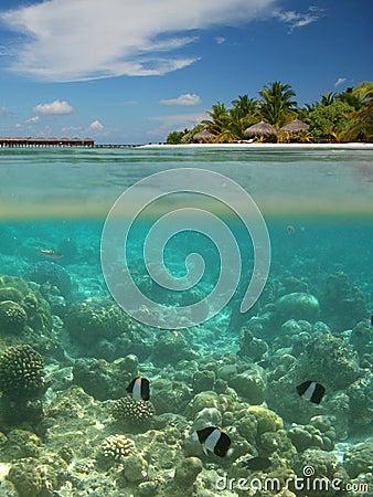 Free The Maldives Royalty Free Stock Photo - 8448405