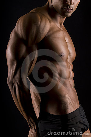 Free The Male Body. Royalty Free Stock Images - 13442209