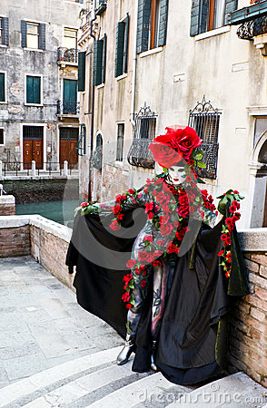 Free The Mask In Roses Royalty Free Stock Image - 29190026