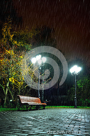 Free The Rainy Night In The Autumn Park Stock Photography - 62070672