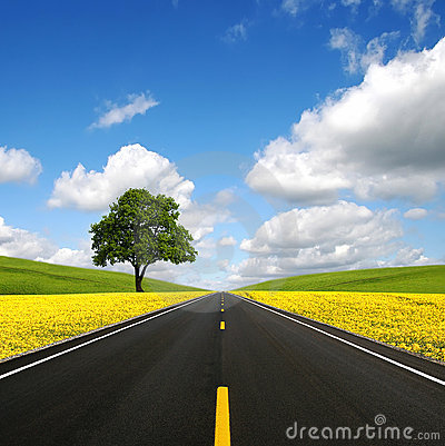 Free The Road Forward Royalty Free Stock Photography - 12328257