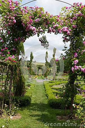 Free The Romantic Alley-way In The Pergola From Roses Stock Image - 43364021