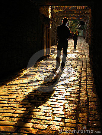 Free The Shadow Royalty Free Stock Image - 377126