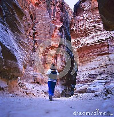 Free The Siq, Petra, Jordan Stock Photography - 23515362