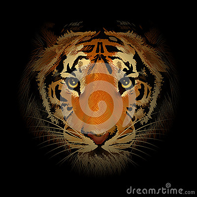 Free The Tiger Head Stock Photography - 57433942