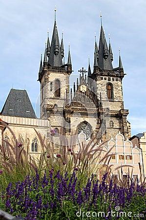 Free The Tyn Church N Prague Royalty Free Stock Photography - 50629967