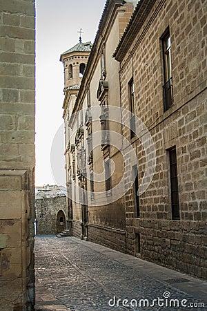Free The University Of Baeza Royalty Free Stock Image - 58038876
