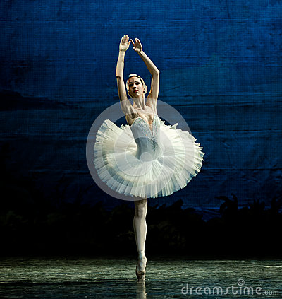 Free The White Swan Dance Royalty Free Stock Photography - 40493747