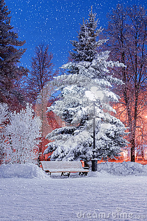 Free The Winter Evening Stock Image - 49315921